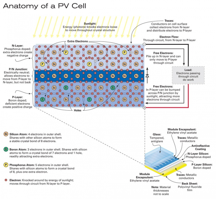 Anatomy of a photovoltaic (PV) cell.